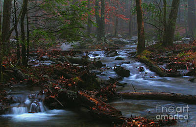 Smoky Mountain Color Art Print by Douglas Stucky