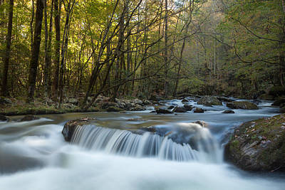 Photograph - Smoky Mountain Stream by Doug McPherson