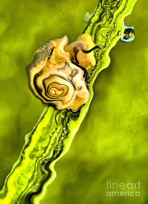 Retro Look Painting - Snail On The Grass by Odon Czintos