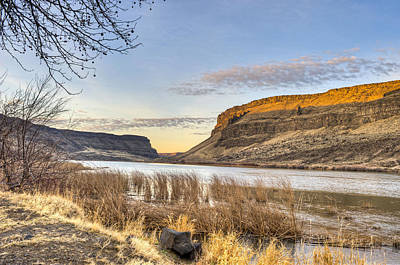 Photograph - Snake River by David Martorelli