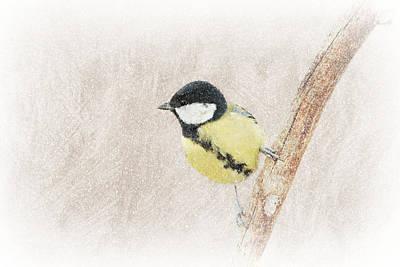 Snow Bird Art Print by Heike Hultsch