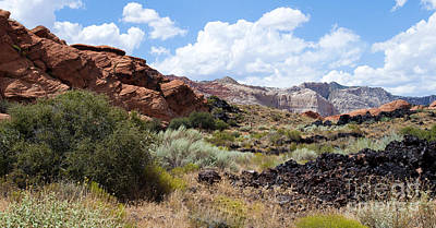 Photograph - Snow Canyon National Park by MaryJane Armstrong