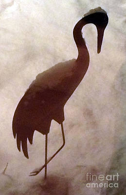 Photograph - Snow Crane by Patricia Januszkiewicz