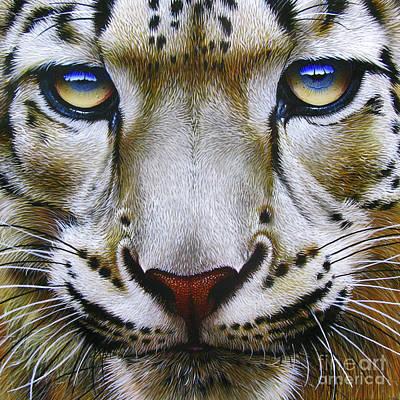 Snow Leopard Original by Jurek Zamoyski
