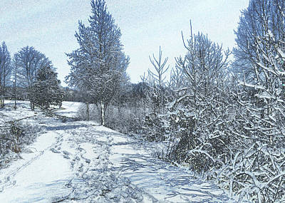Snow Near Goose Feather Pond - C1449k Art Print