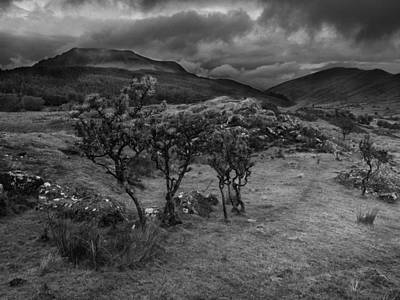 Photograph - Snowdonia National Park Wales by Richard Wiggins