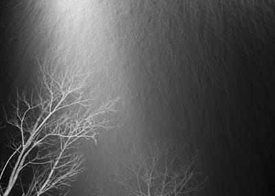 Photograph - Snowfall by Alex Potemkin