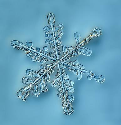 Snowflake Crystal Art Print by Gerd Guenther