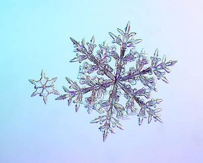 Stellar Photograph - Snowflakes by Kenneth Libbrecht