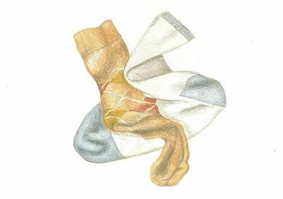 Drawing - Socks 2 by Lew Davis