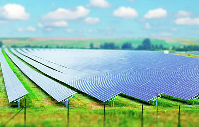 Solar Farm Art Print