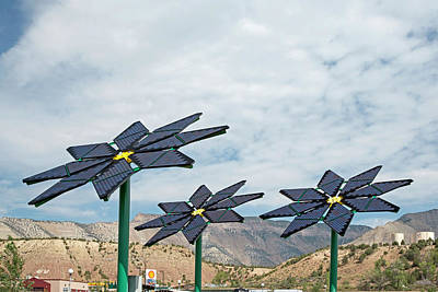 Petrol Green Photograph - Solar Panel Flowers by Jim West