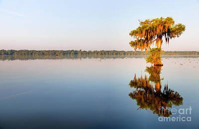 Lafayette Photograph - Solitude by Denis Tangney Jr