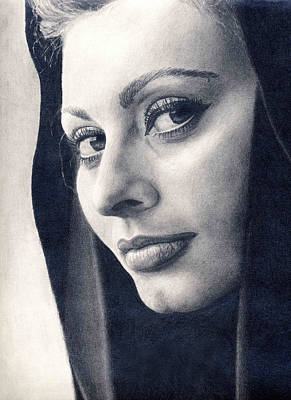 Drawing - Sophia Loren by Erin Mathis