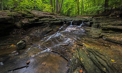 Photograph - South Chagrin Reservation by Torrey McNeal