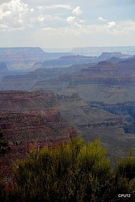 Photograph - South Rim View by Carrie Putz
