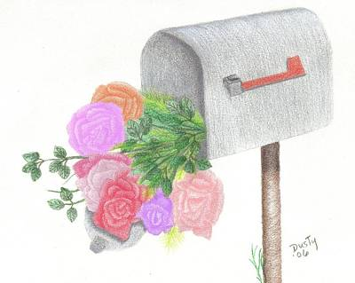Mail Box Drawing - Special Delivery by Dusty Reed