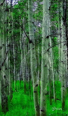 Peace Photograph - Spectacular Aspens by Cindy Greenstein