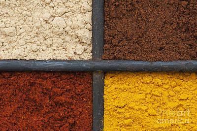 Grid Photograph - Spices Of India Grid by Tim Gainey