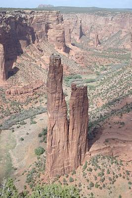 Spider Rock Art Print by Susan Woodward