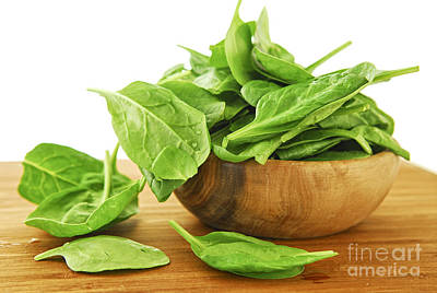 Spinach Photograph - Spinach by Elena Elisseeva