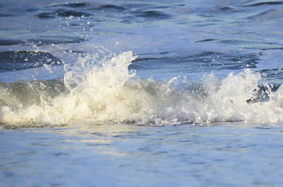 Photograph - Little Splash by Terry DeLuco