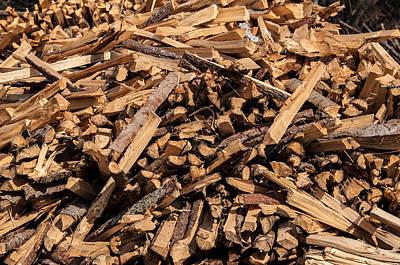 Split Wood Pile In Forest Art Print by Frank Gaertner