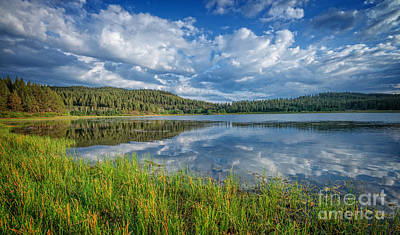 Lake Tahoe Photograph - Spooner Lake by Dianne Phelps