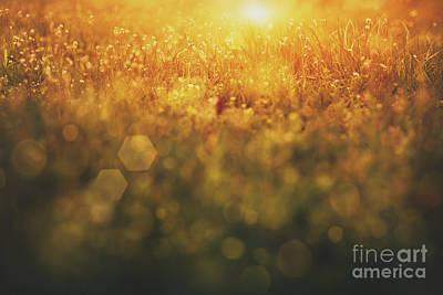Npetolas Photograph - Spring Background by Mythja  Photography