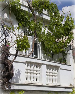 Photograph - Spring Balcony by Radoslav Nedelchev