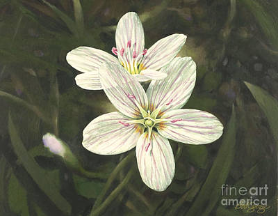 Painting - Spring Beauty by Bob  George