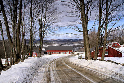 Photograph - Spring Brook Farm by Butch Lombardi