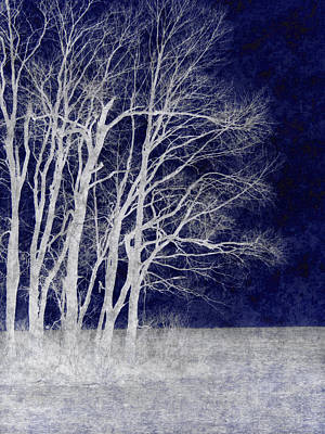 Silver Moonlight Photograph - Spring Frost by Luke Moore
