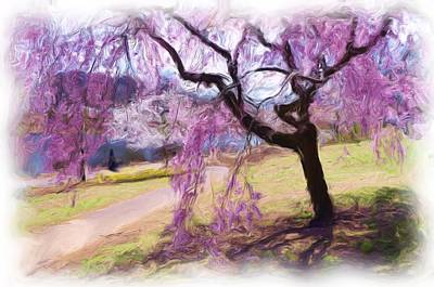 Photograph - Spring Has Sprung  by Allen Beatty