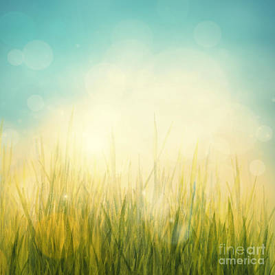 Mythja Digital Art - Spring Or Summer Abstract Season Nature Background  by Mythja  Photography