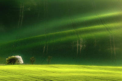 Rolling Hills Photograph - Spring Time by Piotr Krol (bax)