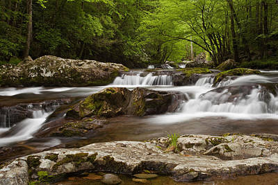 Springtime Cascades In The Smokies Print by Andrew Soundarajan