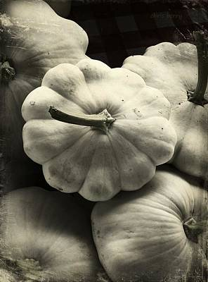 Photograph - Squash by Chris Berry
