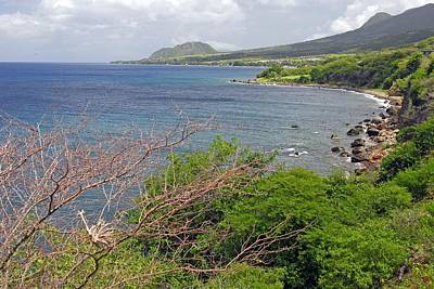Photograph - St Kitts Coast And Countryside by Willie Harper
