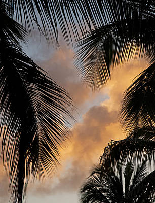 Photograph - St. Thomas Sunset by Doug Davidson