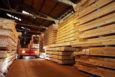 Loader Photograph - Stacks Of Timber Planks In Large Timber S by Mark Sykes