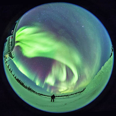 Dyer Photograph - Standing Under The Auroral Oval by Alan Dyer