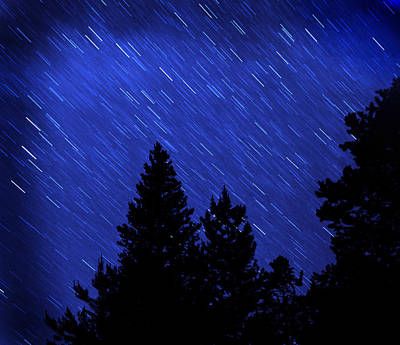 Star Trails In Night Sky Art Print by Lane Erickson