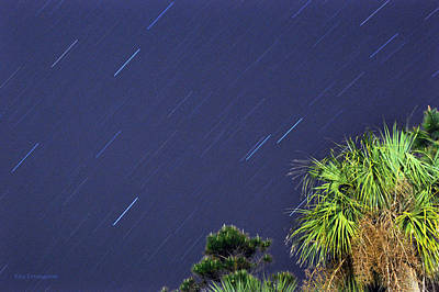 Photograph - Star Trails by Kay Lovingood