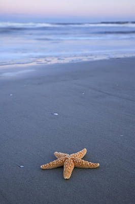 Photograph - Starfish In Waves by Byron Jorjorian