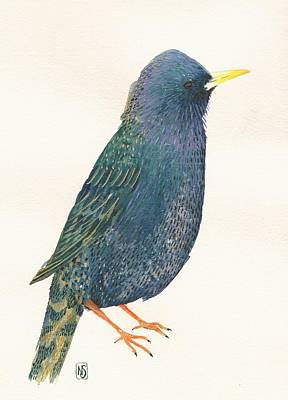 Starlings Painting - Starling by Nina Shilling