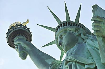 Statue Of Liberty New York City Usa Original