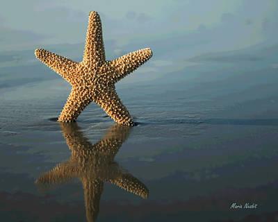 Photograph - Stella Maris by Maria Nesbit