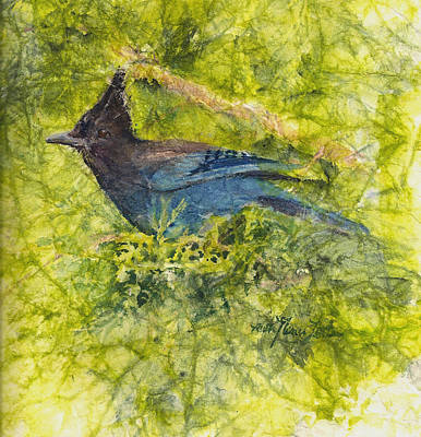 Stellar Jay Art Print by Ruth Glenn Little