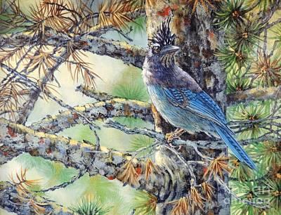 Sandra Williams Painting - Stellars Jay by Sandra Williams